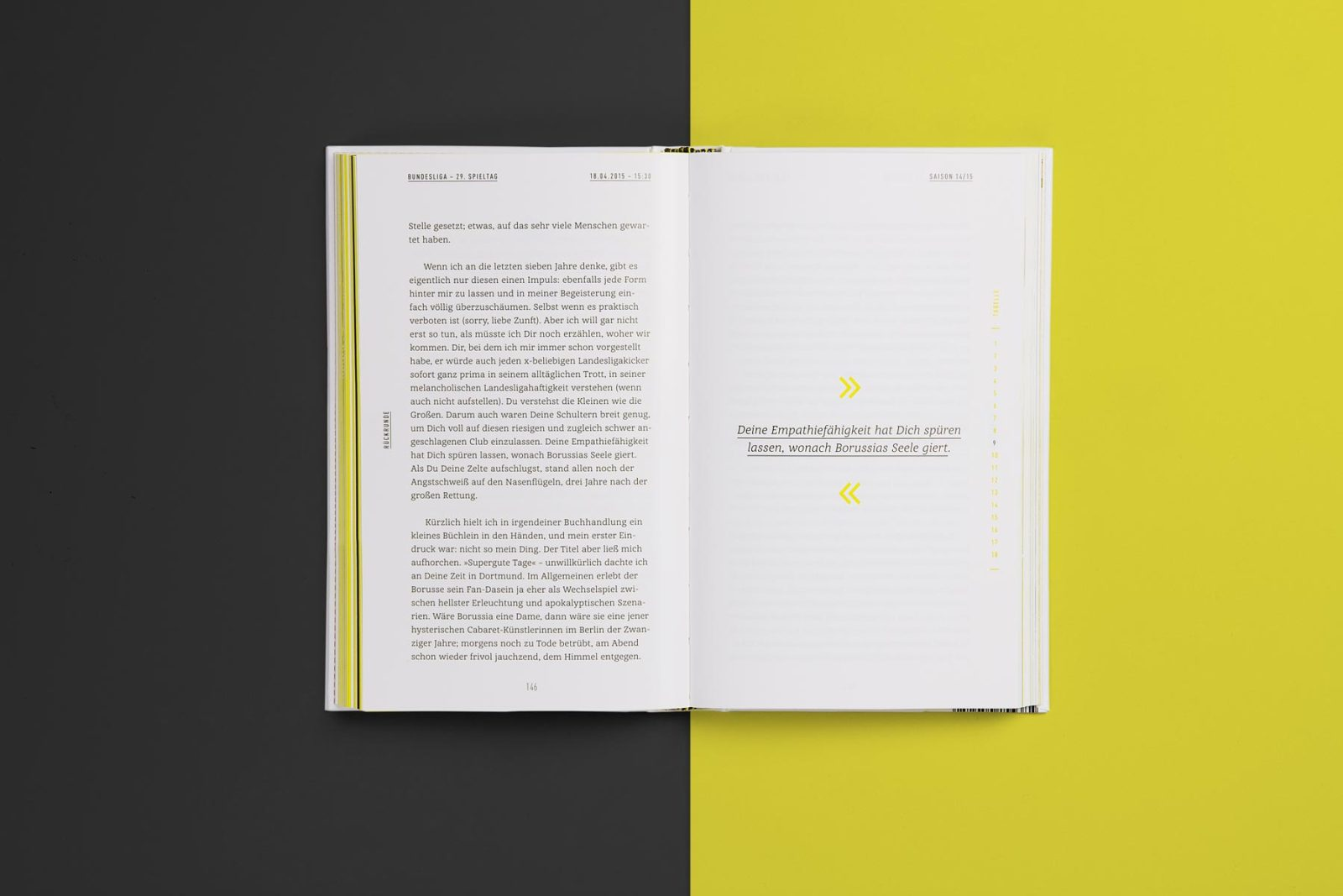 Editienne Grafikdesign - Kommunikationsdesign Berlin- Buchcoverdesign und Buchgestaltung Borussia Dortmund- BVB Buch 13